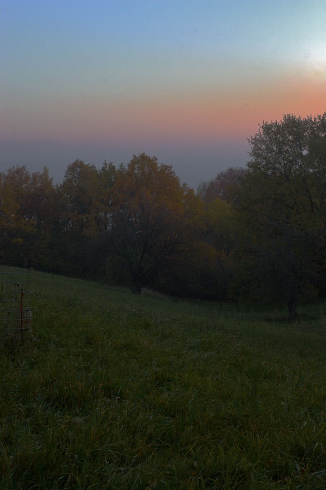Evening mists on Mont Vully • As we descended Mont Vully, a mist descended over the hill-side. It was time to go home.