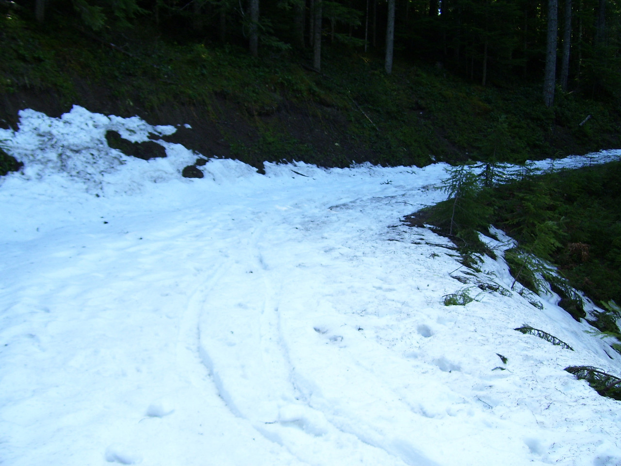 We hit snow at 3500'.