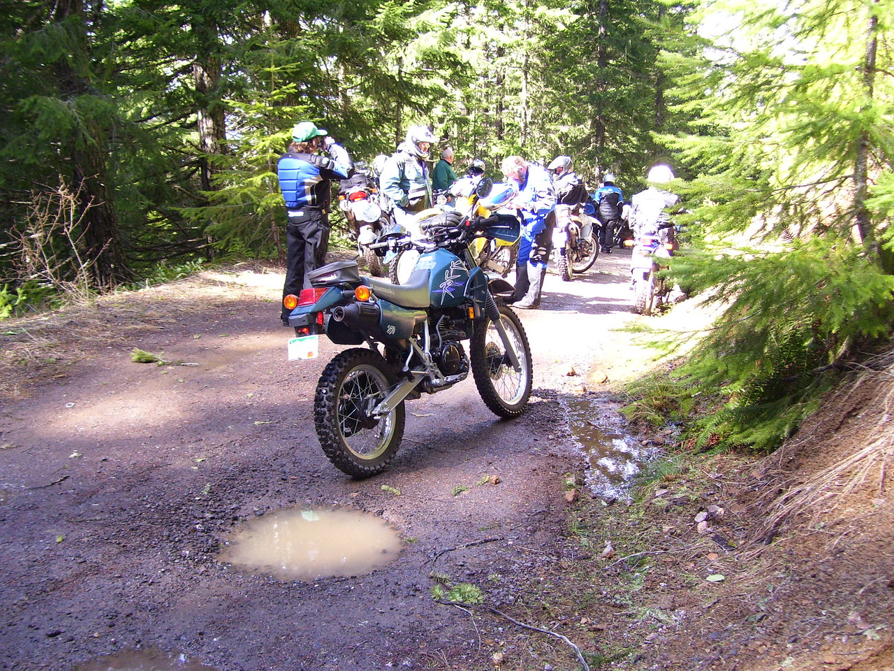 Turning around on the 7605 road. We got about halfway to Burley Mt.