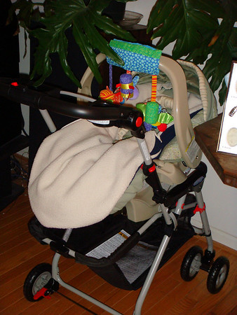2007 11 Nursery
