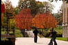 CK-25675 Fall on campus 10-19-07