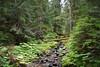Stream running down from Upper Lena Lake.