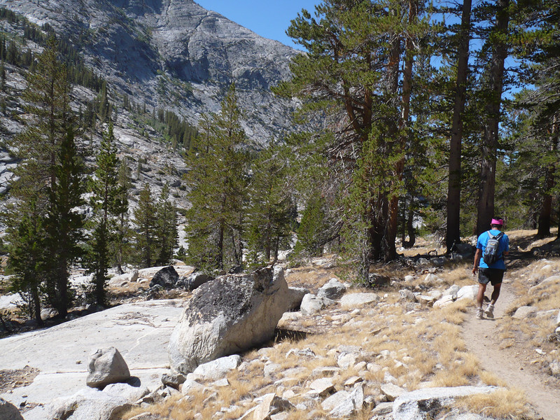 Piute canyon gets narrower and the trees come back