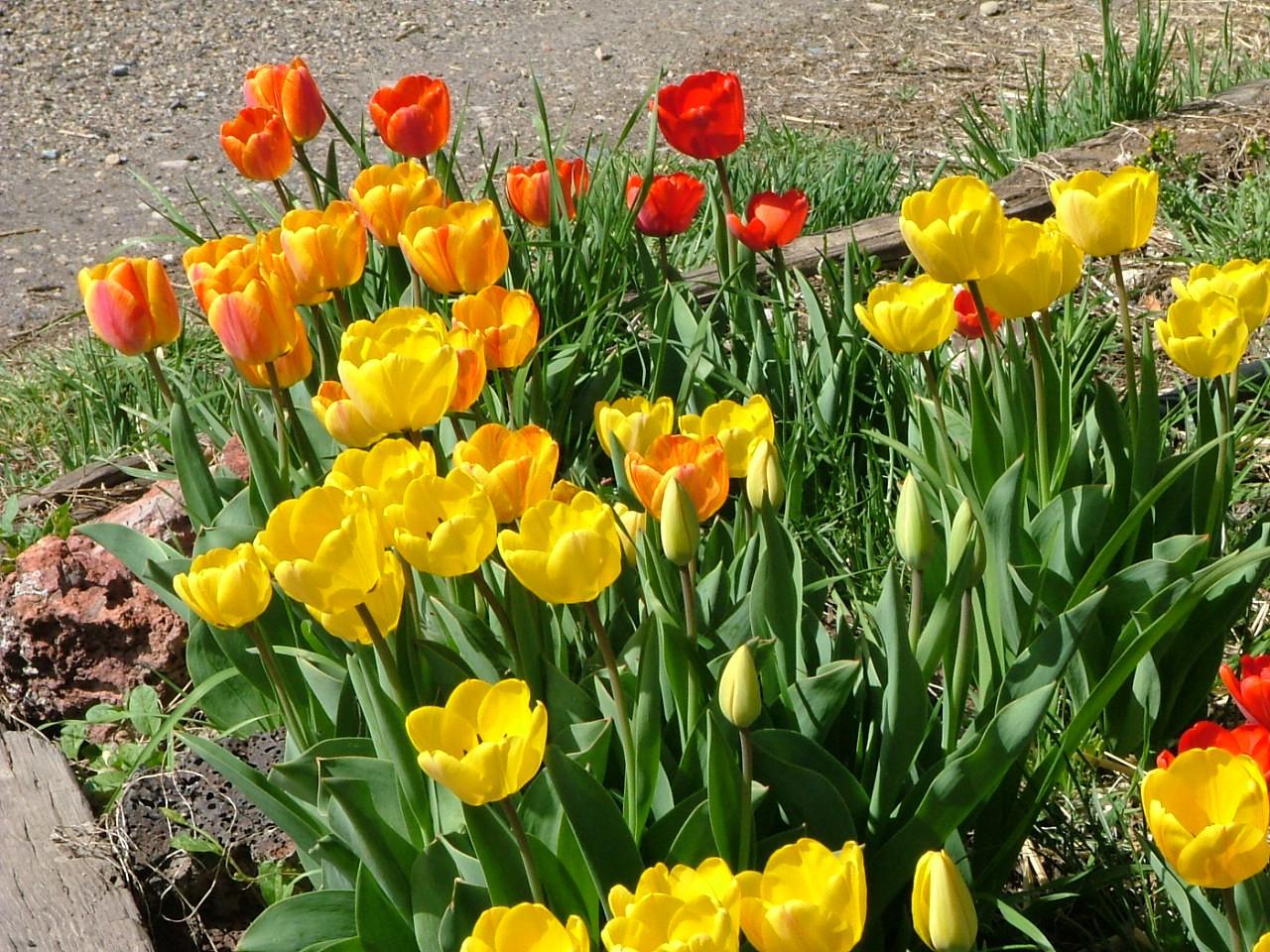 Easter Weekend 2007