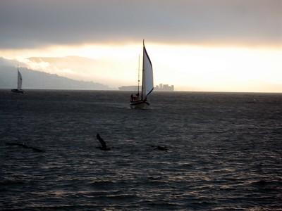 Sailboats in San Francisco Bay, as seen from Pier 39