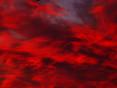 Skies Favorites of 2007