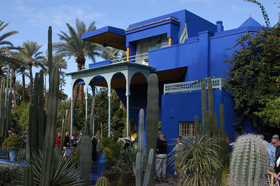 Majorelle Gardens - Kimberly Collins