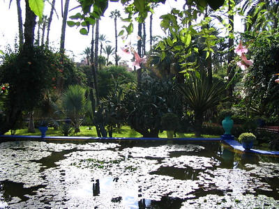 Marjorelle Gardens - Kimberly Collins