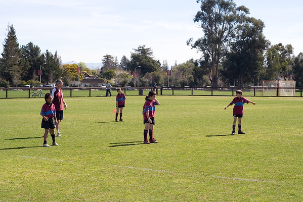 Stanford Rugby