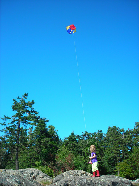 Kite flying at Saxe Point Park