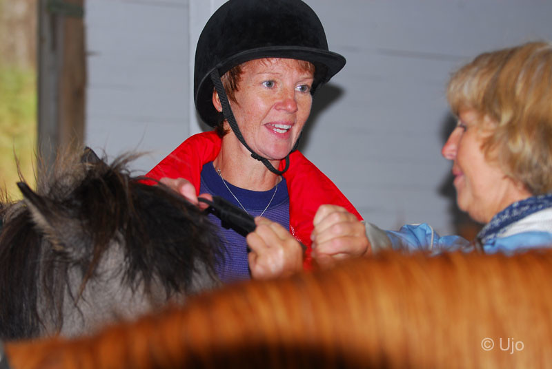 Hästproffsen hjälpet till i varje bås.
