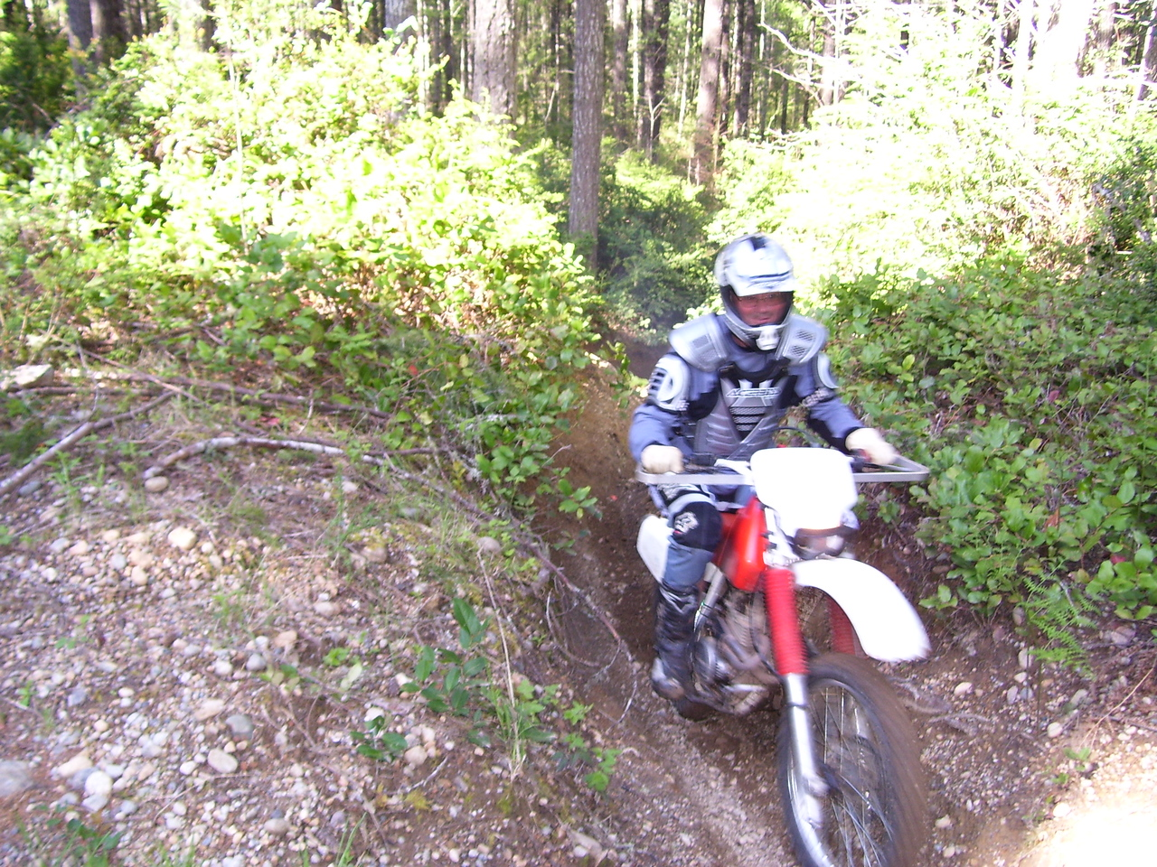 This picture is from April 29th ride, one week following the last venture into the secret forest. Jon C. on his Honda XR 250. We rode 35 miles on a fine, sunny day.