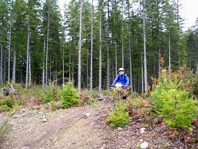 Tahuya Trails