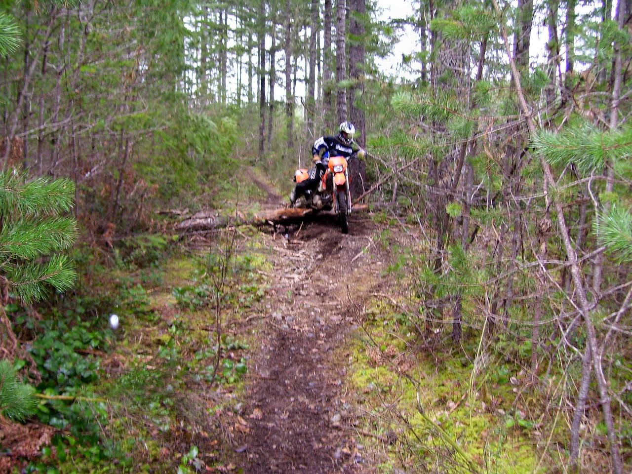 The last log jump before Jon took us on the bush whacker trail.