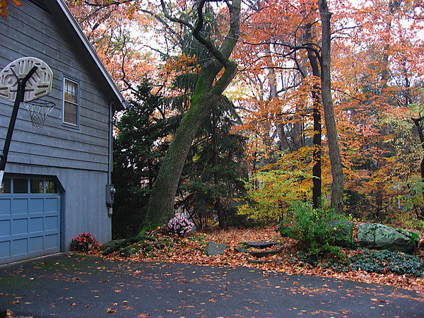 Part of the garage and the yard in front of it