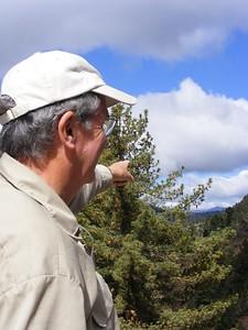"Linclon Hollister ""Mountains!"" - Mibs Mara"