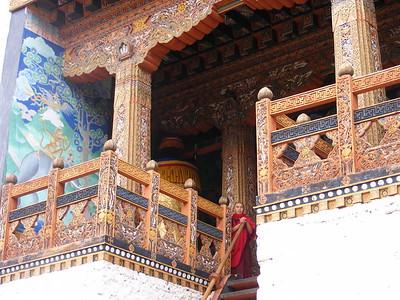 Punakha Dzong - Mibs Mara