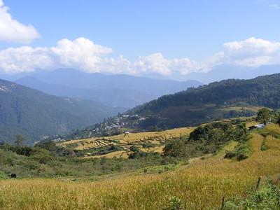 Bhutan Landscape - Mibs Mara
