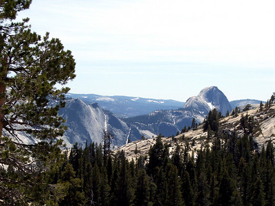 Half Dome from Olmsted Pt.