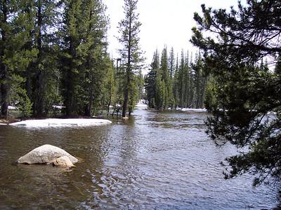 """The """"meadow"""" west of Tenaya Lake."""