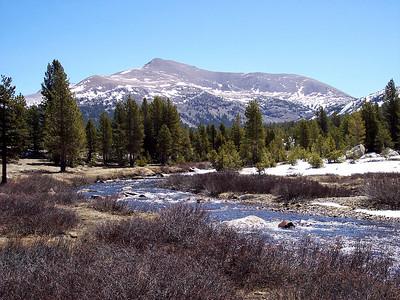 Dana Fork of the Tuolumne and Mt. Dana.