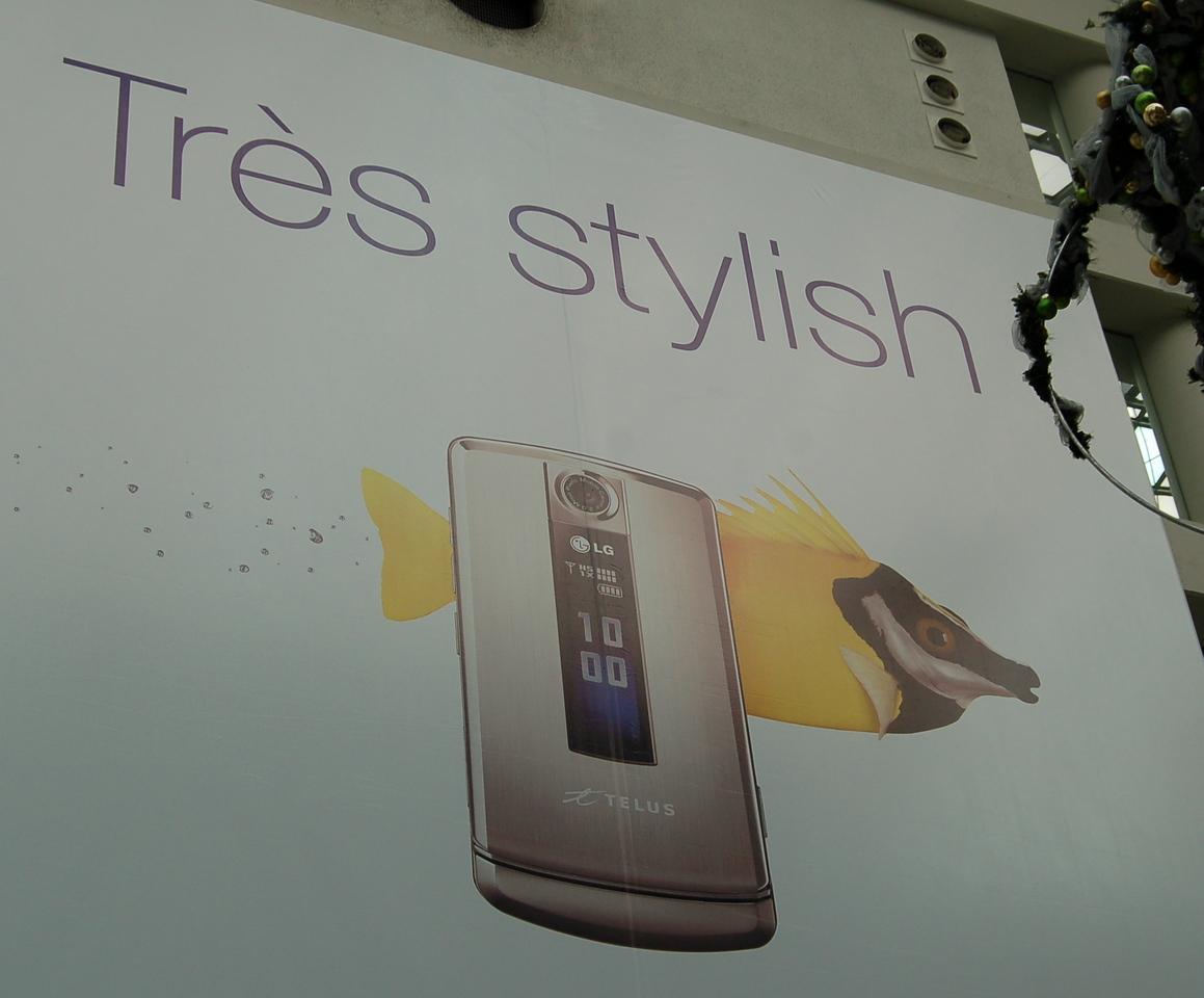 Tres stylish