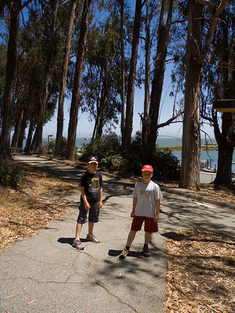 Walking At Coyote Point