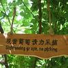 2007China363