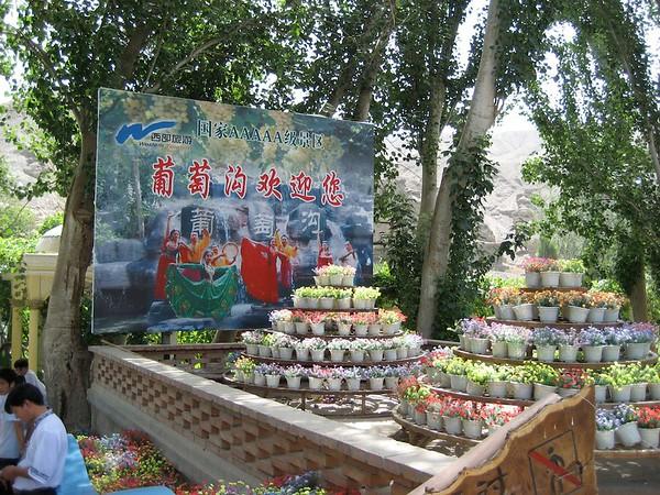 2007China355