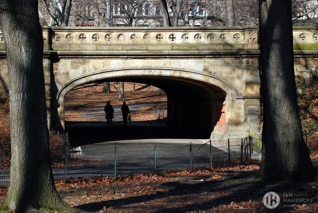 A Bridge Over The Park Central