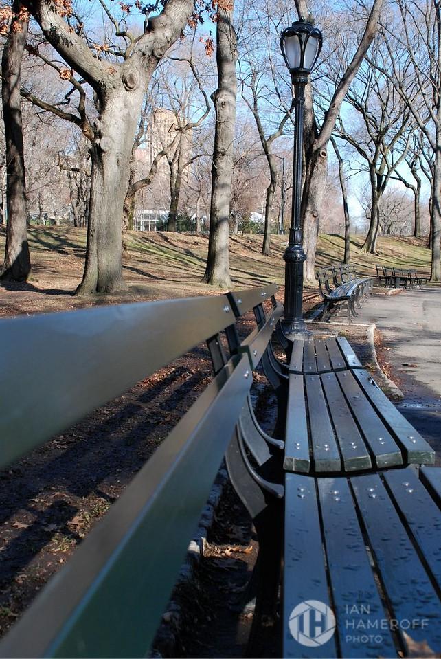 Central Park Rest Stop