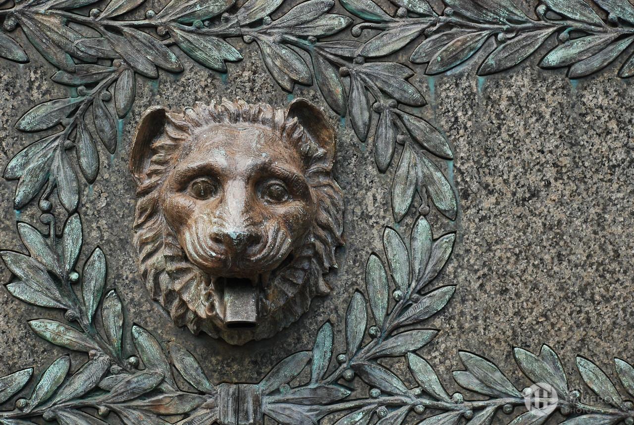 Fountain Lion Heart