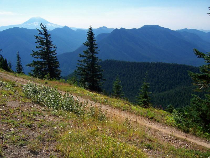 Mt Adams & just below, Juniper Ridge where we had been Friday. Sunrise Peak is between the two trees.