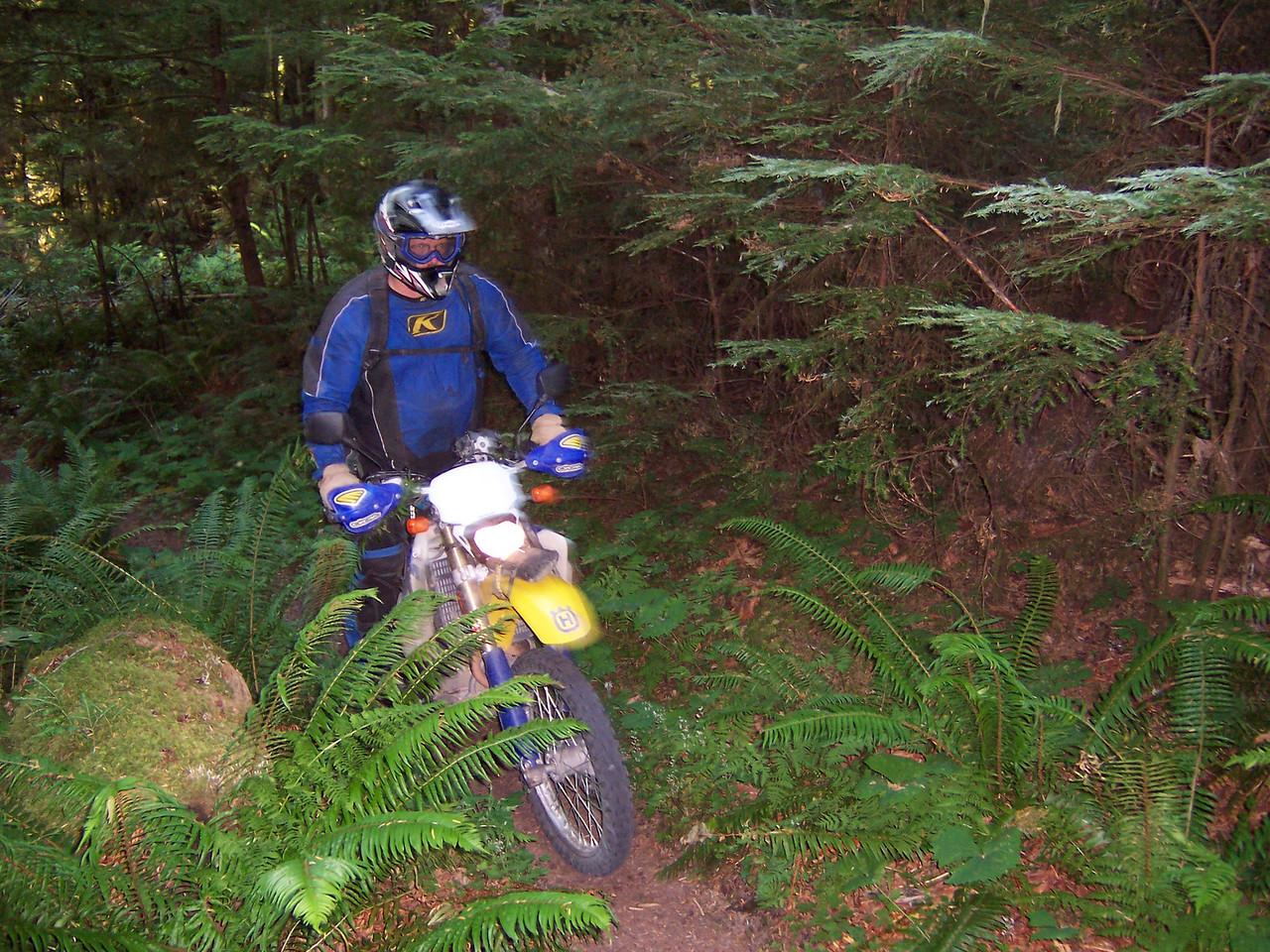 Rob Dog on the 275 Kraus Ridge Trail