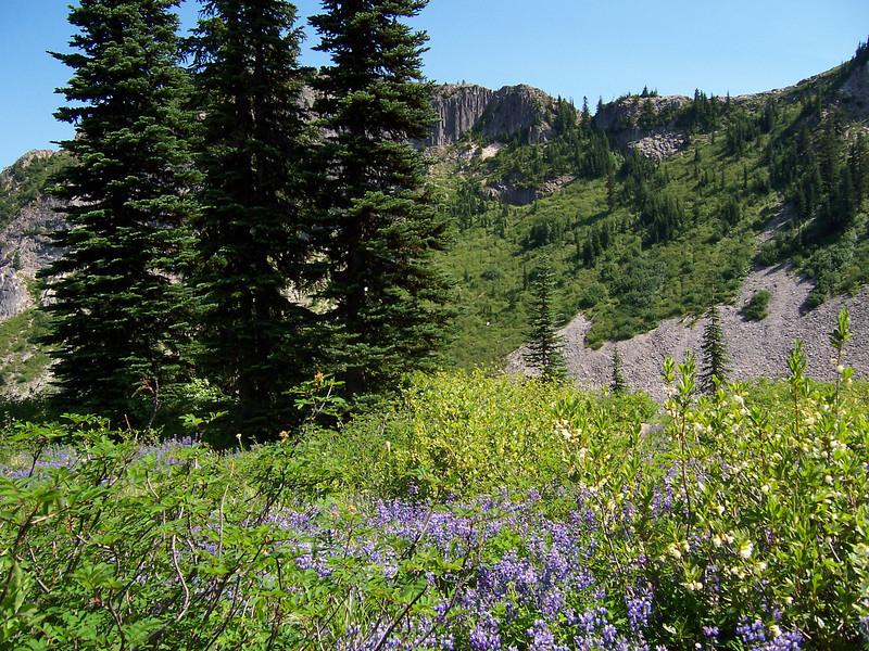 Columnar Jointed Basalt. We did 48 miles of trails Friday.