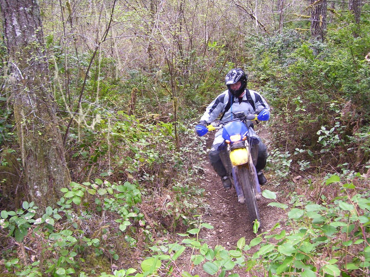 Mark & Husqvarna 250 on the 1.9 Trail.