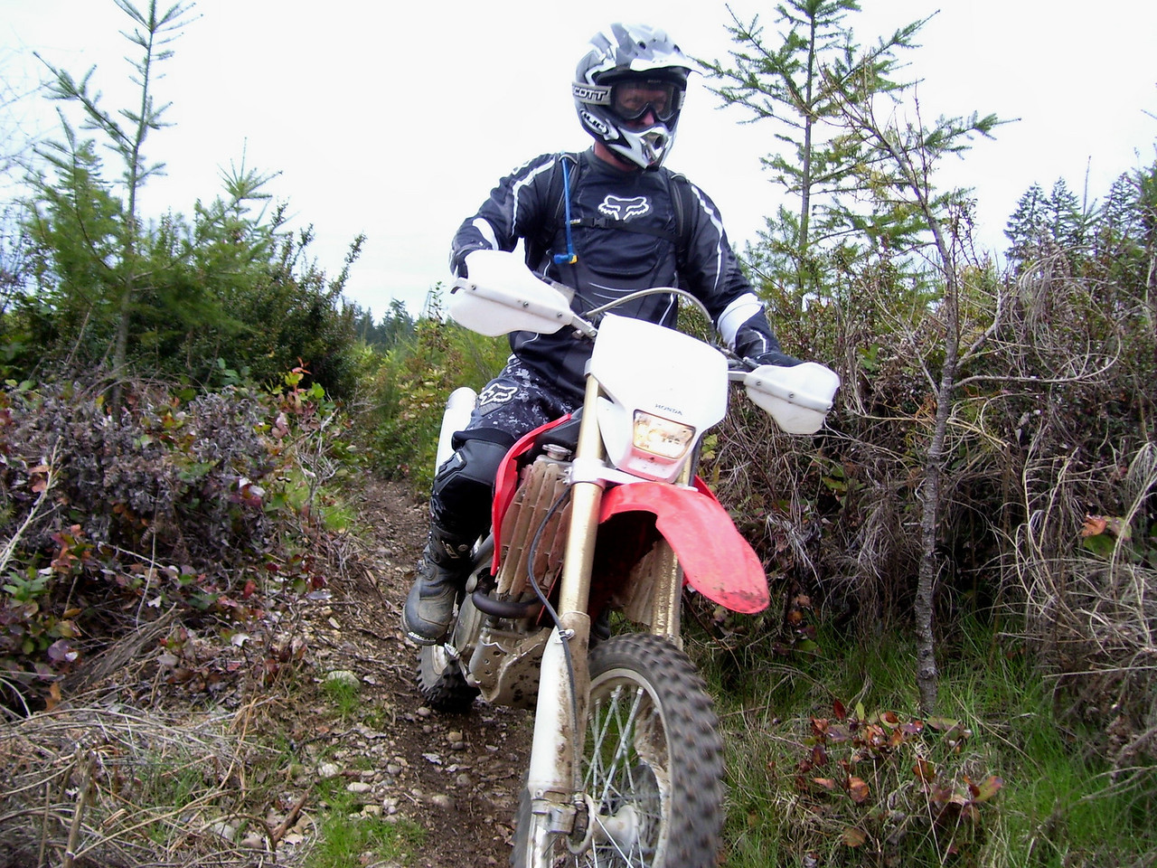 Tod on the Derailleur Trail