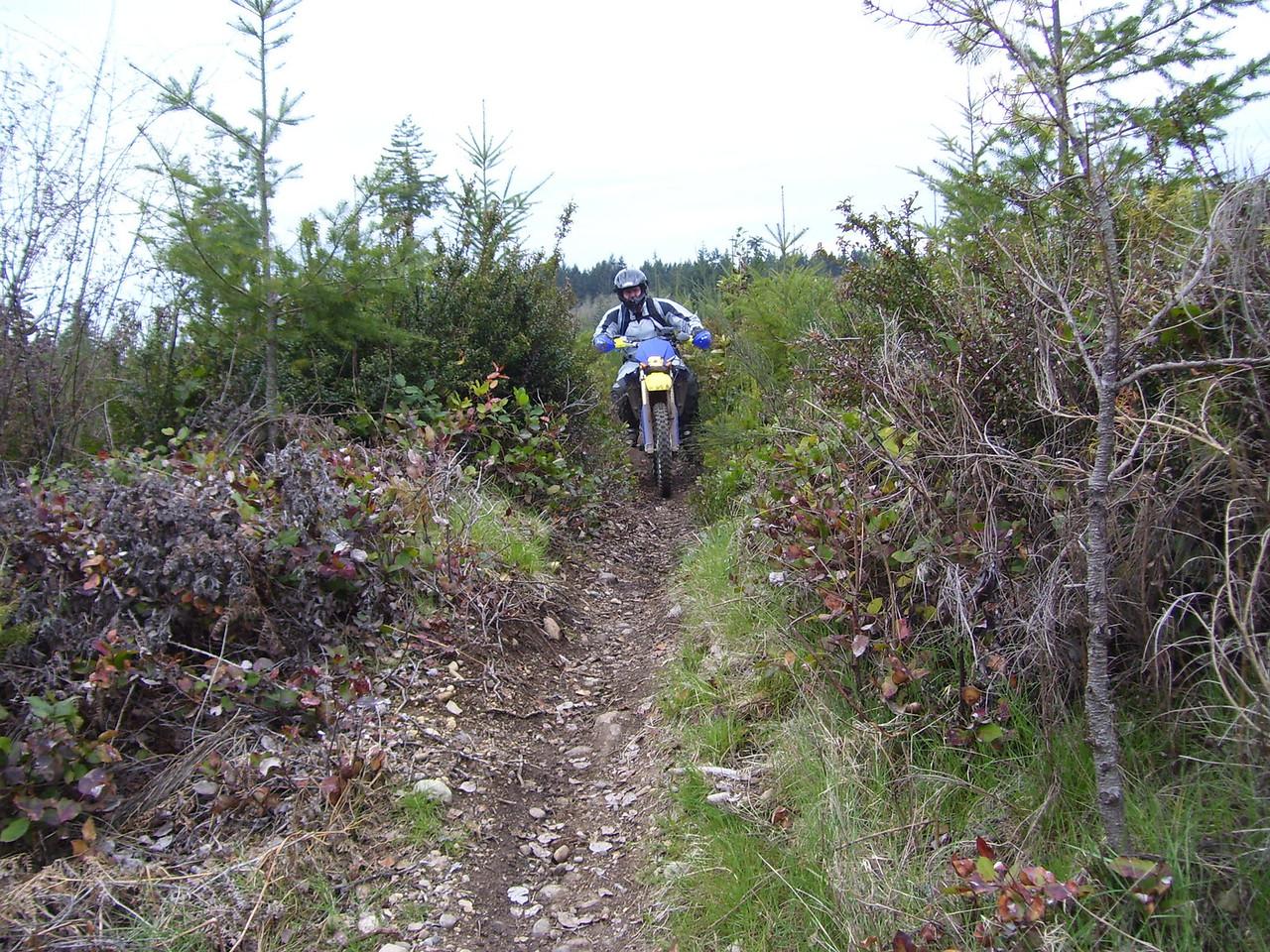 Mark on the Derailleur Trail