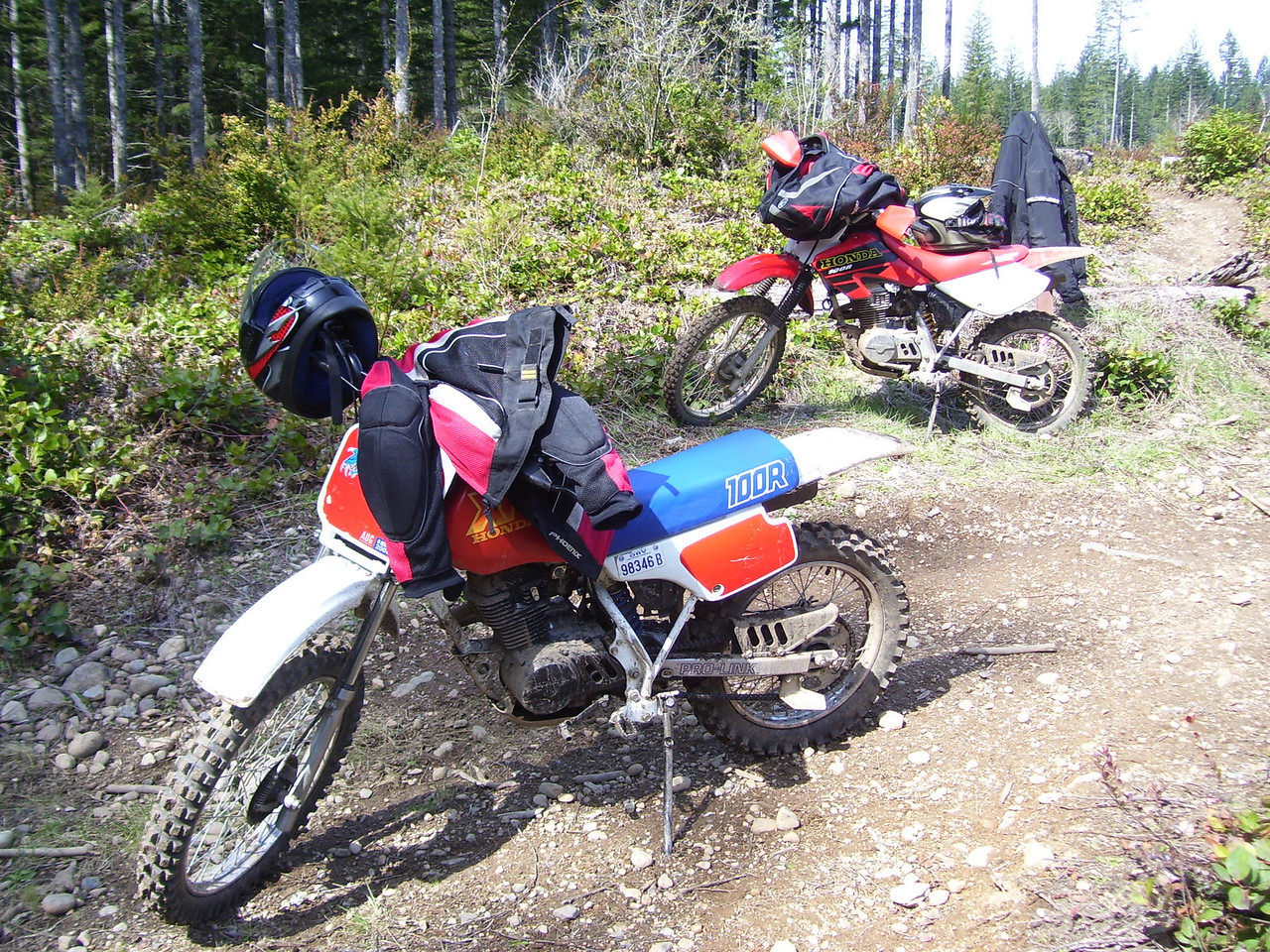 Two XR 100s, one from 1987, one from 2001.