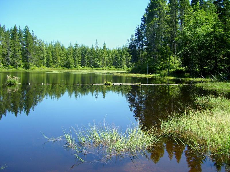 Goat Ranch Pond.