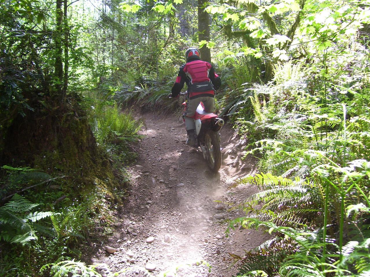 Sylvia on the Howel Lake Trail