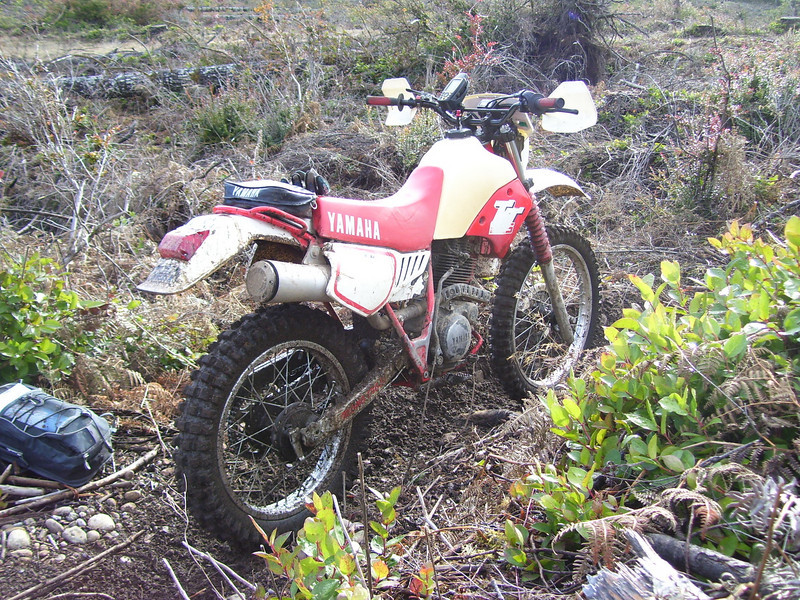"""My old '87 TT 225 on the """"Switch back"""" trail. These trails are really fun. They go back and forth through the old clear cuts."""