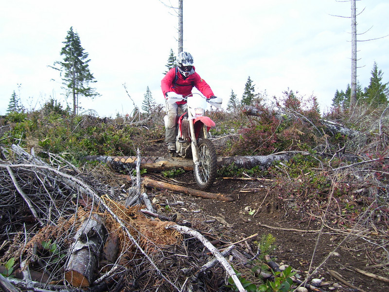 Tod Adams on his '04 CRF 250. This is Tod's 3rd or 4th Trail ride and he was riding over logs on the pegs. Not bad!
