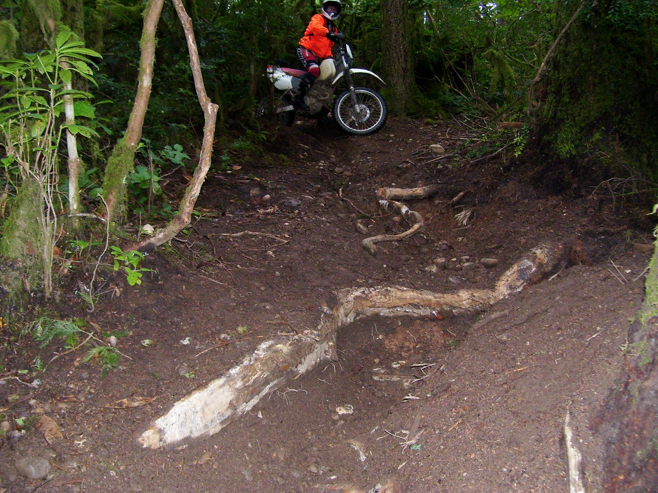 Jon on a gnarlly root section