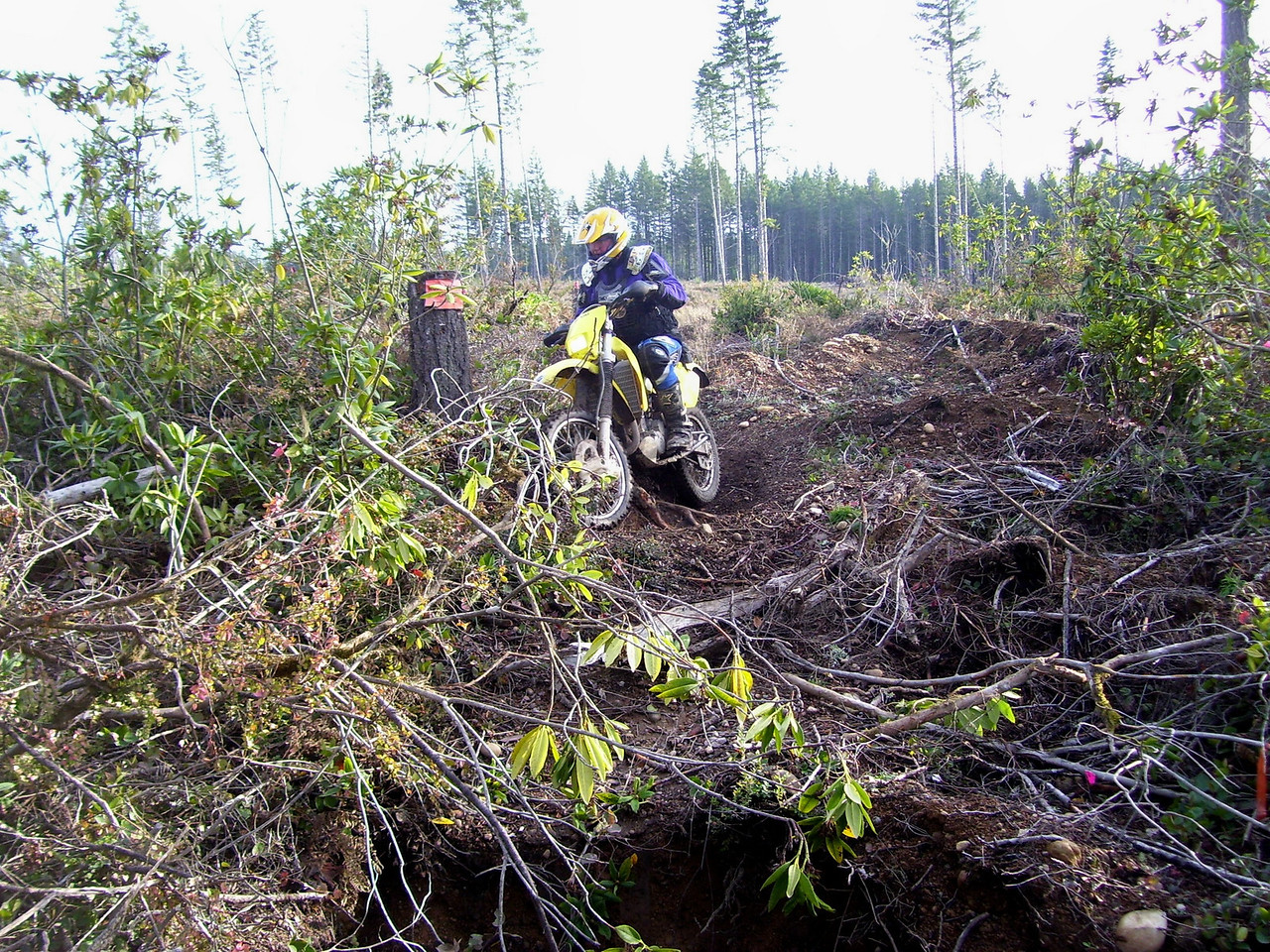 Dan P. How do they build 3 miles of trail in a 80 acre clear cut? We'll show you, just come and ride with us.
