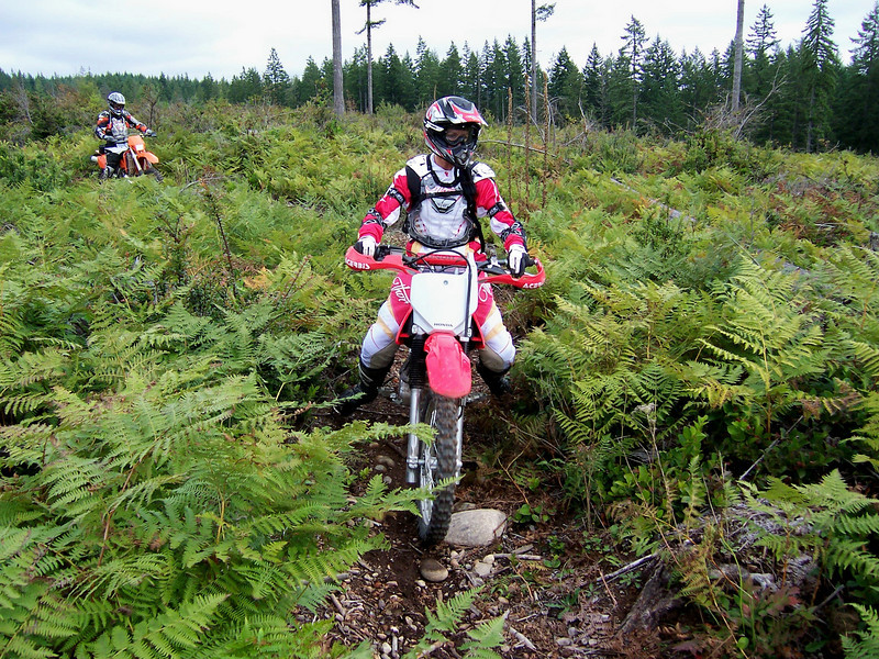 This was Kathy's second day ever of trail riding. Way to go girl..!!