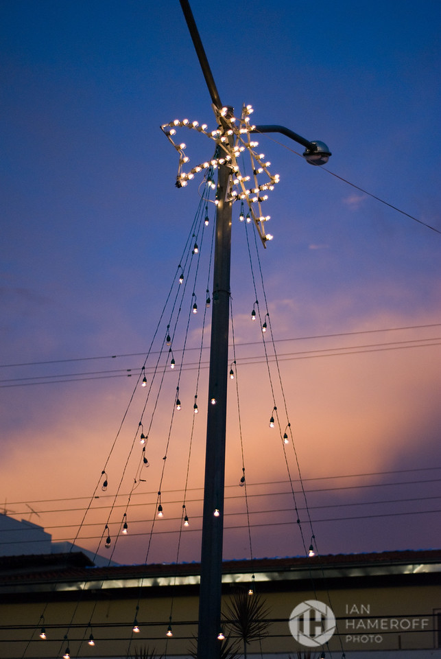 Christmas Lights at Sunset