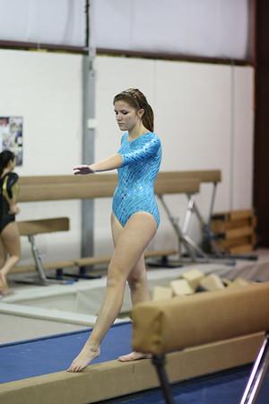 2008-2009 Centerville High School Gymnastics