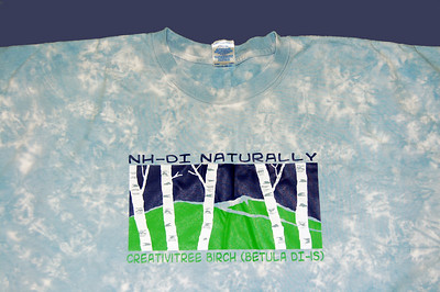 Here's the 2009 Appraiser shirt for NH-DI! It says Alum, Challenge Master or Boardie on the back - with New Hampshire facts!