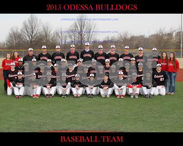IMG_8227 OHS Baseball Team 16x20 copy